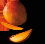 rh-127-apfel-mango-bio-3