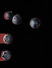 rh-202-waldheidelbeere-muttersaft-3